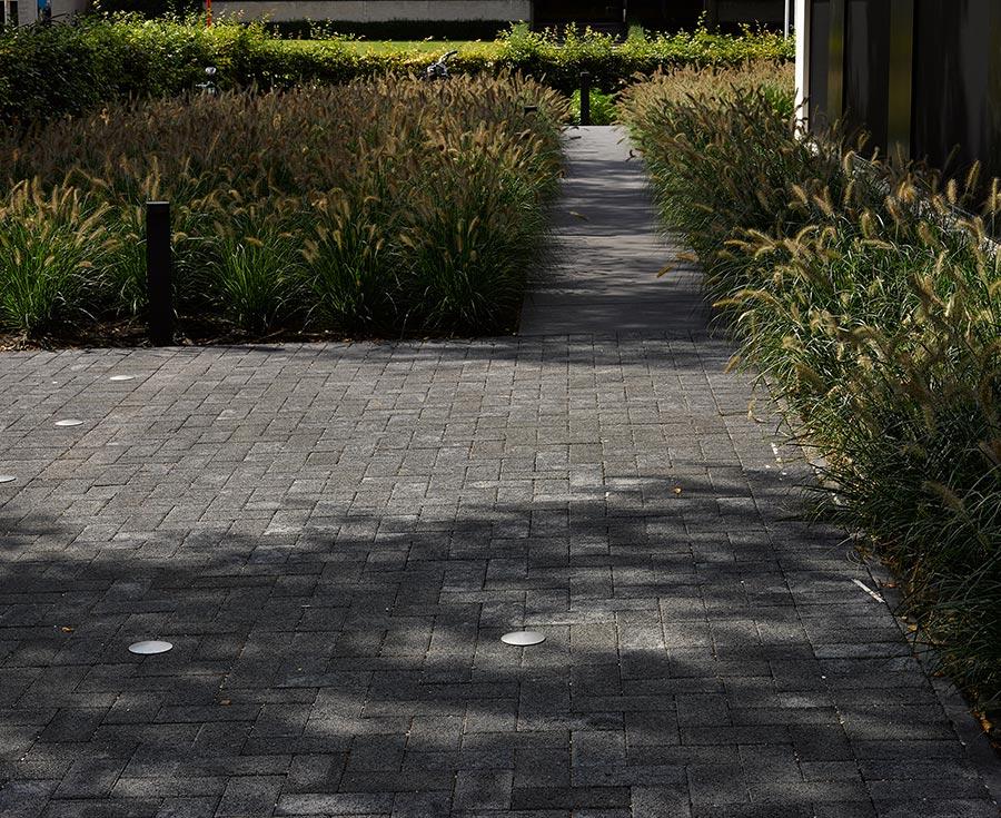Een modern tuinpad tussen de planten. Het pad is gemaakt van donker grijze klinkers.